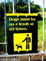 honden altijd aan de lijn